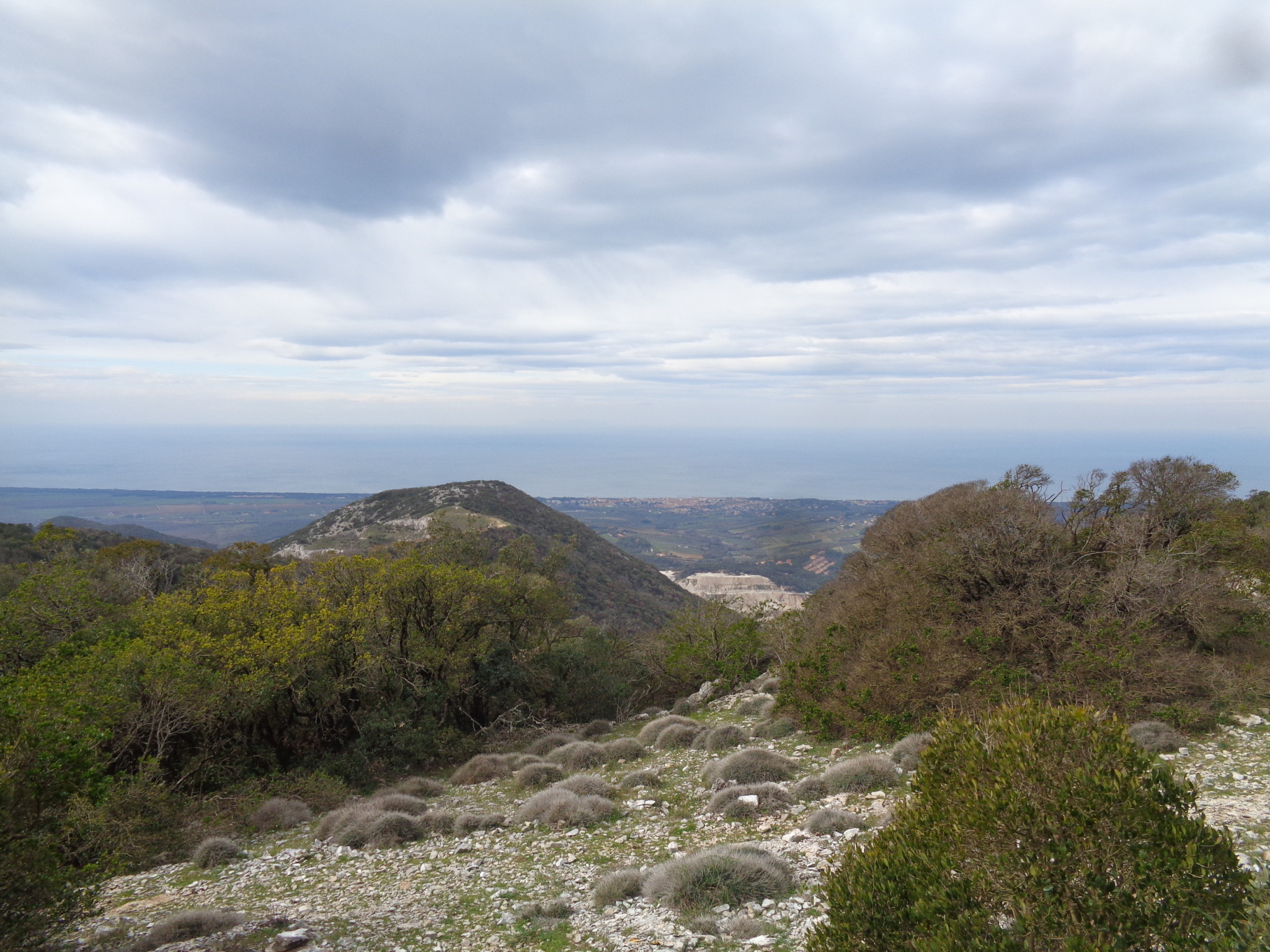 Il Monte Calvi e Suvereto