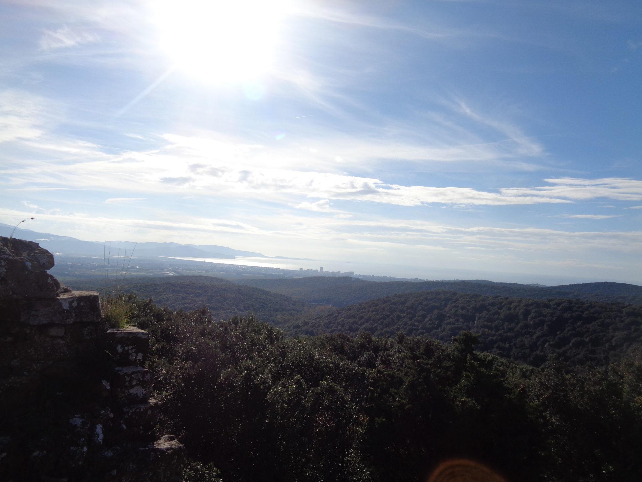 La Torre nella Foresta di Montioni